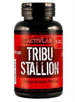 ActivLab Tribu Stallion 60 caps - фото 5074