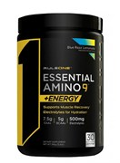 RULE 1 R1 Essential Amino 9 + Energy,  345 гр.